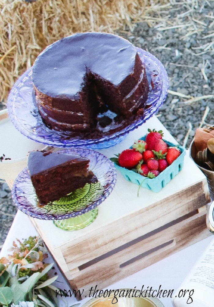 The Farmstead Party and Chocolate Salted Caramel Cake